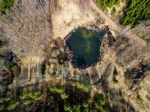 surrbild flyg- sikt av landsbygd med skogsjön Fotografering för Bildbyråer