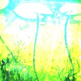 Surreal Alien Wonderland Abstracted Vibrant Faded Grunge Stock Photos