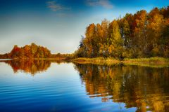 Surreal autumn of yellow trees with reflection on lake Stock Image
