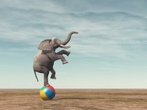 Surreal beeld van het elefant in evenwicht brengen vector illustratie