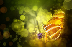 Surreal butterfly background. Surreal background with fantasy butterfly feeding on colorful plants and flowers Stock Image
