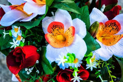 Surreal colorful flowers Royalty Free Stock Photography