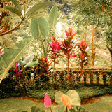 Surreal colors of fantasy tropical garden Stock Photo