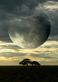 Surreal composition with Moon over savannah. Surreal composition with sunset on the savanna and a giant moon piercing a cloudy sky, for science fiction or Stock Image