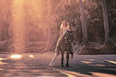 Surreal dream scene of woman on horse. Surreal scene of medieval woman on horseback on forested beach Royalty Free Stock Photo
