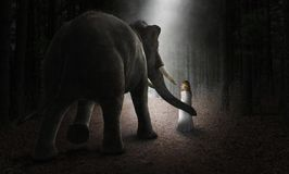 Surreal Elephant, Girl, Friends, Love, Nature. Surreal elephant and young girl who are friends in a deep dark forest or woods. Imagination, love, friendship Stock Images