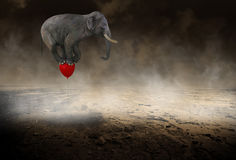 Surreal Flying Elephant Red Balloon stock photography
