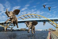 Surreal Flying Elephants, Amazing Wildlife royalty free stock image