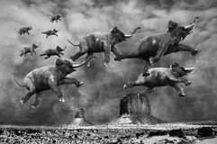 Surreal Flying Elephants. The sky is crowded with flying elephants in this surreal scene of a desolate landscape. Each elephant can fly through the sky Royalty Free Stock Photography
