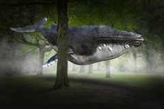 Surreal Flying Whale, Forest, Nature. Surreal flying humpback whale in a deep, dark, mysterious nature forest. Abstract concept for surrealism, peace, hope, love stock image