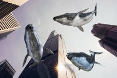 Surreal Flying Whales, City Buildings
