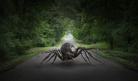 Surreal Giant Spider, Road, Highway Royalty Free Stock Photography