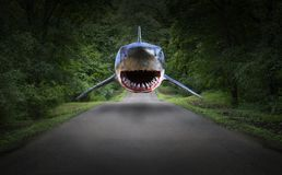 Surreal Shark, Road, Forest, Nature Royalty Free Stock Image