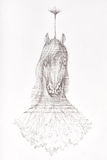 Surreal hand drawing of a horse decorative artwork Stock Photos
