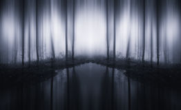 Surreal infinite forest with lake and fog stock photos