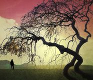 Surreal landscape with small human figure and twisted branches Royalty Free Stock Photo