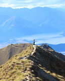 Surreal landscape of Wanaka. New Zealand nature can amaze with breathtaking sceneries. So excited to be alive Stock Photo