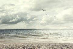 Free Surreal Light Illuminates A Beautiful Ocean Landscape Royalty Free Stock Images - 103760499