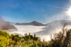 Surreal morning fog. Mystic and surreal landscape with morning fog in the mountains on way to the Cradle Mountain-Lake St Clair National Park, Tasmania Royalty Free Stock Photos
