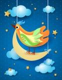 Surreal nacht met halve maan en vogel Stock Foto's