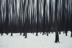 Surreal oneindig donker de winterbos stock fotografie