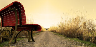 Surreal park bench Stock Image