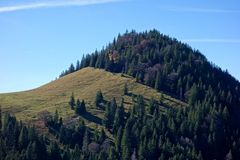 Long Shadow Forested Hill with Field stock images