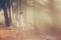 Surreal photo of young woman standing in forest. image is textured and toned. dreamy concept. royalty free stock image
