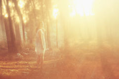Surreal photo of young woman standing in forest. image is textured and toned. dreamy concept. Royalty Free Stock Images