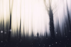 Surreal scene with man in forest with flying sparks Stock Photo