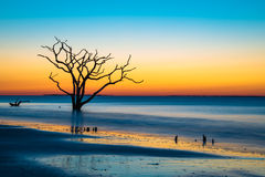 Surreal sunrise at Botany Bay. A surreal scene as first light appeared over the ocean at Botany Bay beach on Edisto Island, South Carolina stock photo