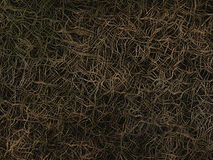 Surreal tangled root backgrounds Royalty Free Stock Images