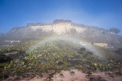 Surreal view on the top of Mount Roraima with rainbow Royalty Free Stock Photos