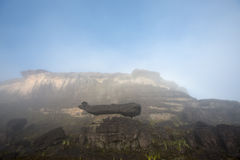 Surreal view on the top of Mount Roraima under the mist Stock Images