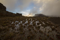 Surreal view on the top of Mount Roraima under the mist Royalty Free Stock Images