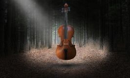 Surreal Violin, Music, Misical Instrument stock photos