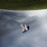 Surreal woman falling. Surreal image of a woman falling up towards the sky Stock Images