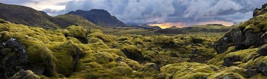 Surreale Landschaft mit wolligem Moos bei Sonnenuntergang in Island Lizenzfreie Stockbilder