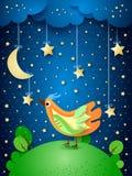 Surreale Nacht mit hängenden Sternen und buntem Vogel Stockfoto