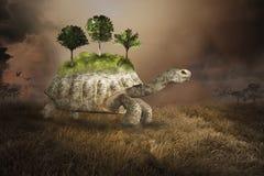 Surreale Schildkröte, Schildkröte, Umwelt, Umweltbewegung, Natur stockbilder