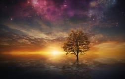 Surrealer Baum im See
