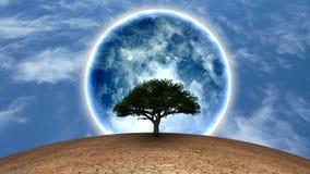 Life. Surrealism. Green tree in arid land. Full moon in blue sky vector illustration