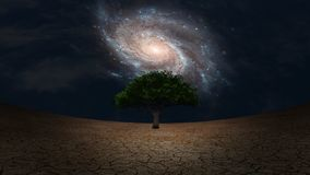 Life. Surrealism. Green tree in arid land. Galaxy in night sky. Some elements image credit NASA Royalty Free Stock Image