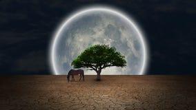 Oasis of life. Surrealism. Horse grazes near green tree in arid land. Full moon at the horizon vector illustration
