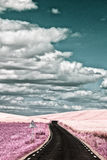 Surrealistic landscape in infra red color Royalty Free Stock Images