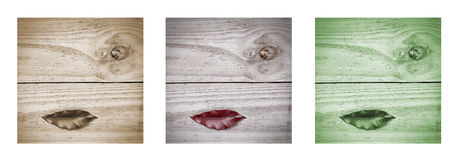 Surrealistic lips on wooden grey background.Triptych in brown, grey and green. Stock Photos