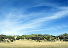 Surrealistische Landschaft Lizenzfreies Stockbild