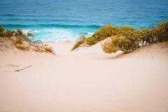 Surrealistyczne złote piasek diuny na Atlantyckiej linii brzegowej na Baia Das Gatas Północ Calhau, Sao Vincente wyspy przylądek  Fotografia Royalty Free