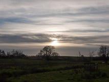 surrealistycznego niebo chmur słońca słońca ustalonego pola drzew trawy łąkowa ziemia Obraz Stock
