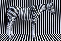 Surrealistyczni zebra lampasy, przyrody zwierzę, natura obraz stock